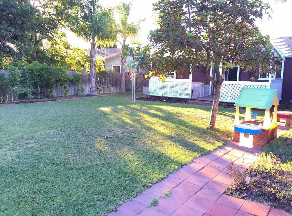 Tiny Meadow Day Care - Backyard Play Area
